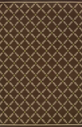 Transitional Rugs Caspian Brown 11764
