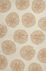 Jaipur Contemporary Rugs Coastal I-O Ivory 14626