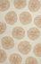 Jaipur Contemporary Rugs Coastal I-O Ivory 14626