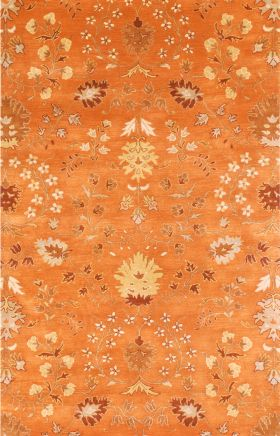 Jaipur Transitional Rugs Narratives Orange 15094