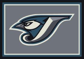 Milliken Sports Rugs MLB Team Spirit Grey 15878